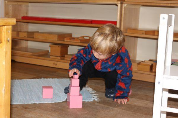 Montessori in Action